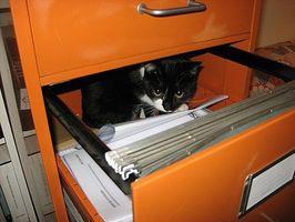 Come digitalizzare un numero elevato di documenti cartacei