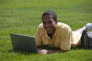 Ho bisogno di servizio Internet per usare il mio portatile senza fili?