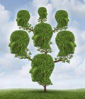 Come fare un albero genealogico in Microsoft Word