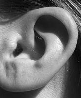Come aggiungere effetti di voce usando Audacity