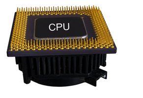 Qual è la differenza tra una CPU & un processore?