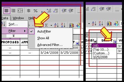 Come utilizzare il filtro automatico in MS Excel