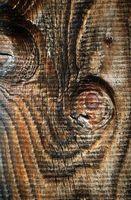 Come fare senza giunte texture legno