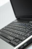 Informazioni su un Dell Inspiron 1501