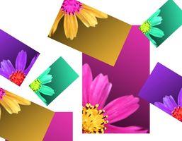 Come ridimensionare le immagini in formato JPEG