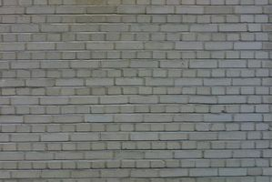 Come volare fino alla parete su Zwinky