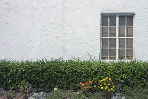 Come sostituire Windows su una casa Stucco